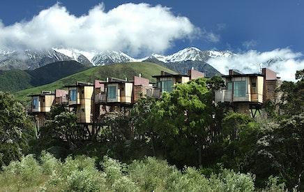 Hapuku Lodge & Tree Houses
