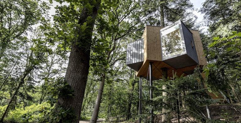 Lovtag Treetop Cabins