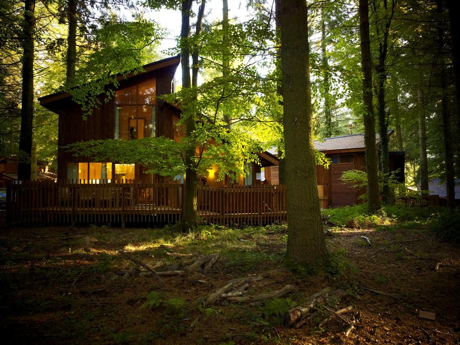 Luxury Woodland Accommodation In The Forest Of Dean