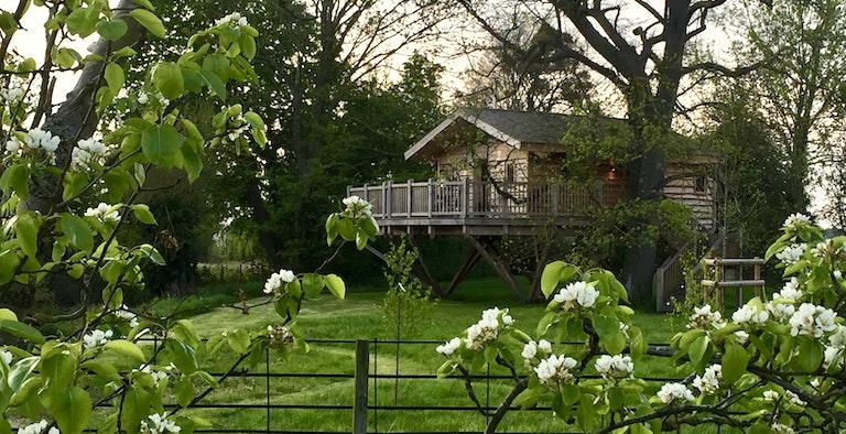 Bredon Hill Treehouses