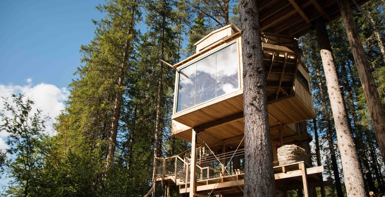A Auge Treehouse
