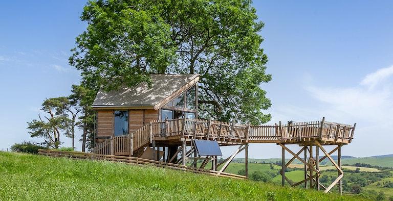Cadwollens Treehouse