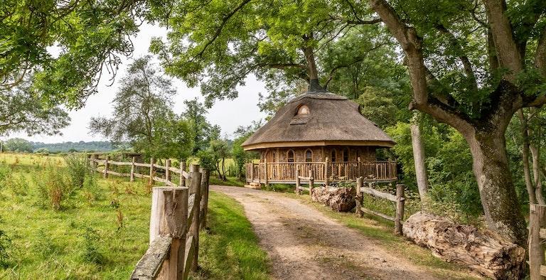 The Treehouse Tenbury