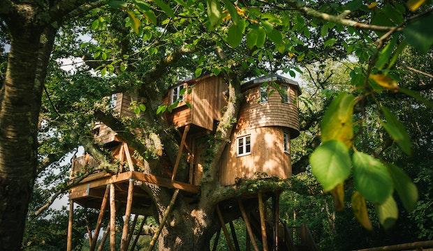 Treetops Treehouse
